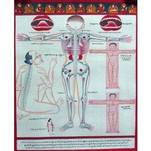 Tibetischer Medizin Yoga Thangka Nr. 4 40cm x 48cm