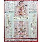 Tibetischer Medizin Yoga Thangka Nr. 7  40 x 49cm